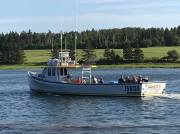 Deep Sea Fishing with Barry Doucette's Deep Sea Fishing